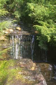 Bachblüte Rock Water